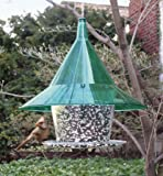Arundale Mandarin Sky Café Bird Feeder, Green, Squirrel-proof, Large