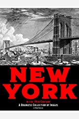 New York in the 19th Century: A Dramatic Collection of Images Paperback
