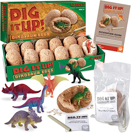 Easter Egg Archeology and paleontological Toys Dinosaur Eggs Excavation kit Toys Suitable for Boys Girl Gifts Discover 12 Different Dinosaur Toys WANOU Dinosaur Eggs Dig Kit 37Pack