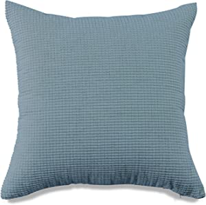 BUHUA Set of 2 Decor Throw Pillow Covers Velvet Soft Solid Square Cream Cushion Case for Sofa Couch Living Room Bedroom Outdoor Pillowcases 20x20 Inch Blue