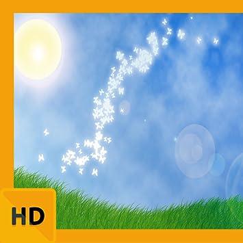 Amazoncom Beautiful Sunny Day Hd Free Wallpaper Appstore