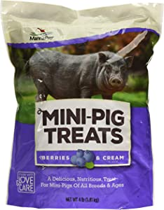 Manna Pro Mini Pig Berry & Cream Flavor Treats | Perfect Training Treats | 4 Pounds