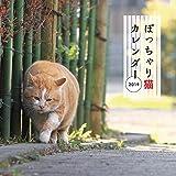 ぽっちゃり猫カレンダー2019 ([カレンダー])