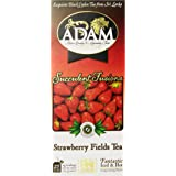 Adam Tea, Strawberry Fields Tea, 25 Tea Bags, (2 grams each), 1.67 oz
