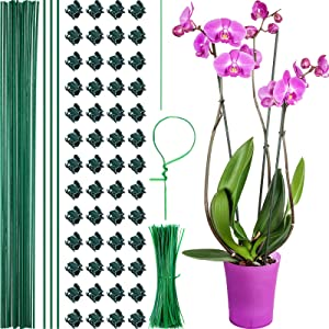 50 Pieces Orchid Clips Plastic Garden Plant Clips with 10 Pieces Metal Plant Stakes, 200 Pieces Twist Flexible Garden Plant Ties for Supporting Plants to Grow Upright