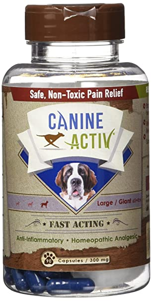 Dog pain relief safe