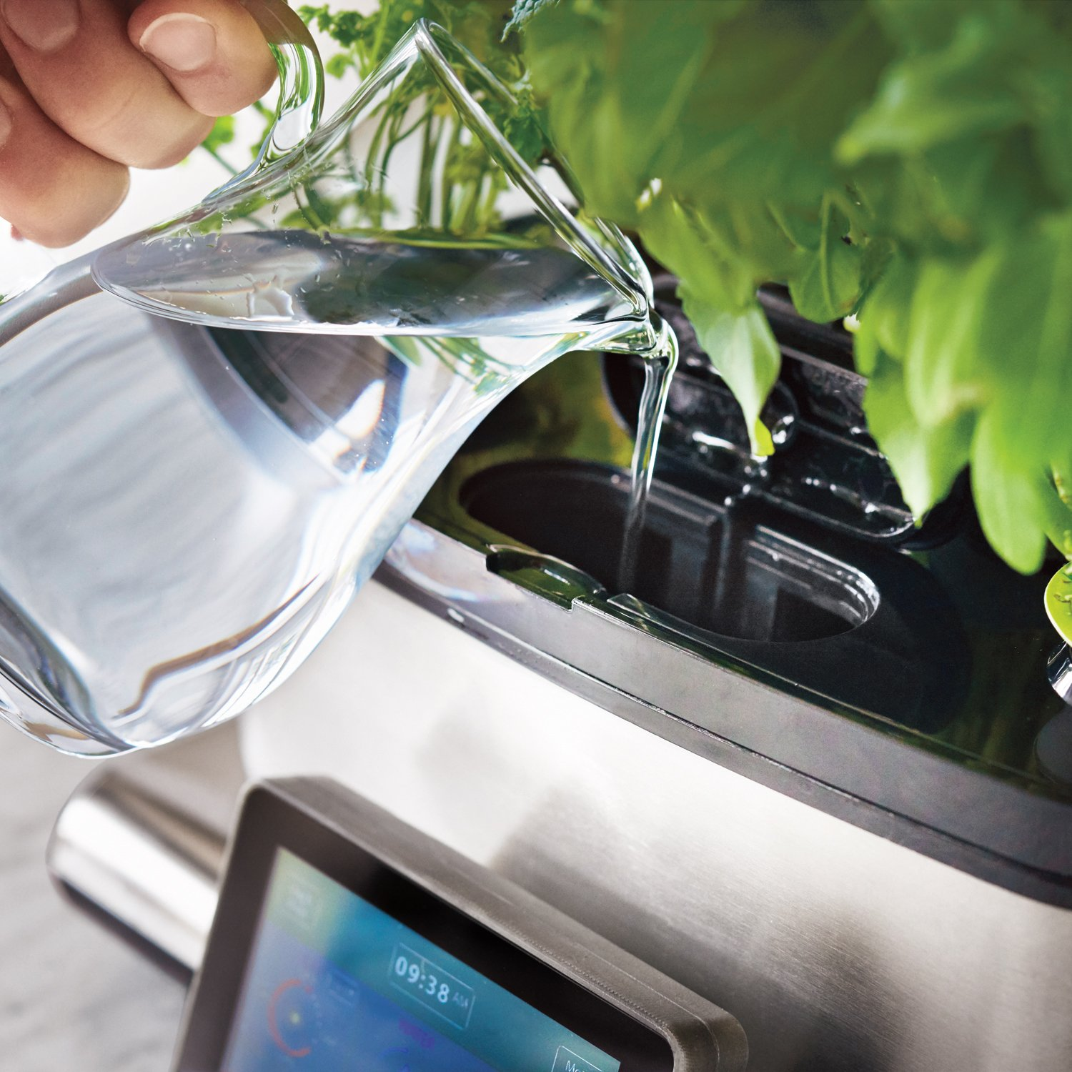 AeroGarden Harvest Touch with Gourmet Herb Seed Pod Kit, Stainless Steel by AeroGrow (Image #4)