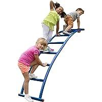 Swing-N-Slide Arch Playset Metal Ladder