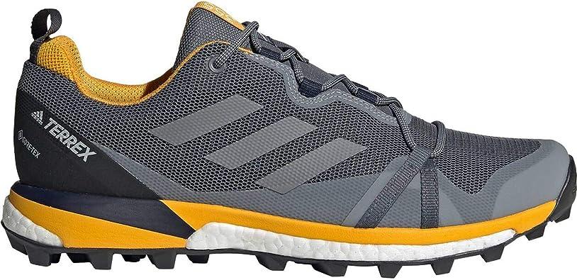 adidas Terrex Skychaser LT Gore Tex Zapatillas de Trail Running Onix: Amazon.es: Deportes y aire libre