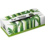 The Cheeky Panda 100 Percent Bamboo Facial Tissue Flat Box, Pack of 80 Tissues