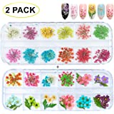 GOTONE 120pcs Dried Flowers 3D Nail Art Stickers Decoration DIY Preserved Real Flower Stickers Tips Manicure Decor Mixed…