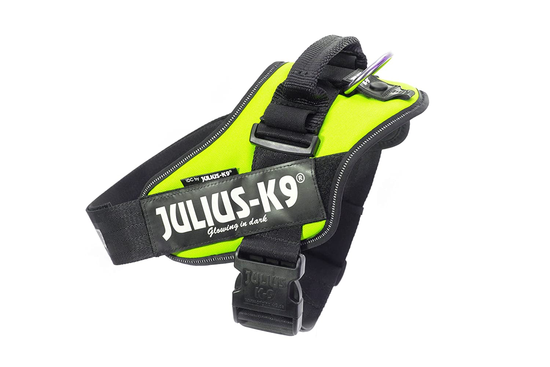 Julius K9 16IDC-NE-2 IDC Arnés de fuerza con campo de logotipo, tamaño 2, verde neón: Amazon.es: Productos para mascotas