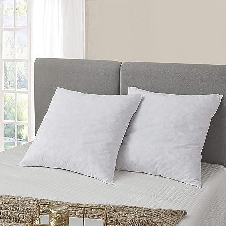 Amazon Com Serta Feather Euro Square Pillow 26x26 2 Pack Pillow Euro White Home Kitchen