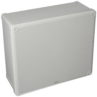Schneider Electric NSYTBS342912 Caja ABS IP 66 IK 07 Int.Al325 ...