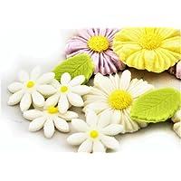 Noah Bakery Alta Calidad Flor de azúcar Margarita Hoja Verde Diferentes Colores Set Decoraciones Hecho a