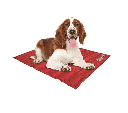 Amazon Com Coleman Pet Cooling Mat Red 24 X 30 Pet Supplies