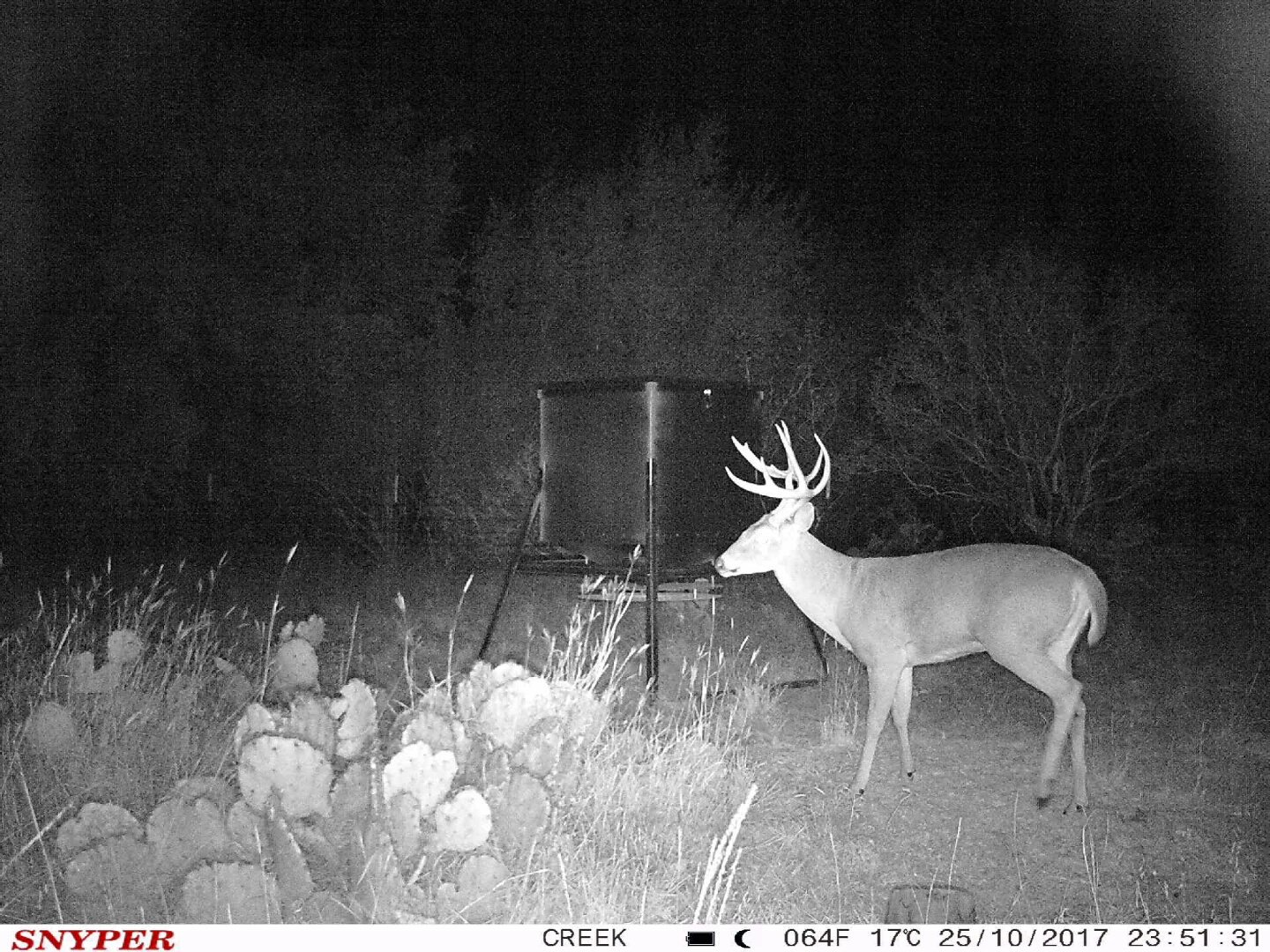 The General 3G Game Camera by Snyper Hunting Products (12MP, Viewing LCD, Connected by AT&T) by Snyper Hunting Products (Image #9)