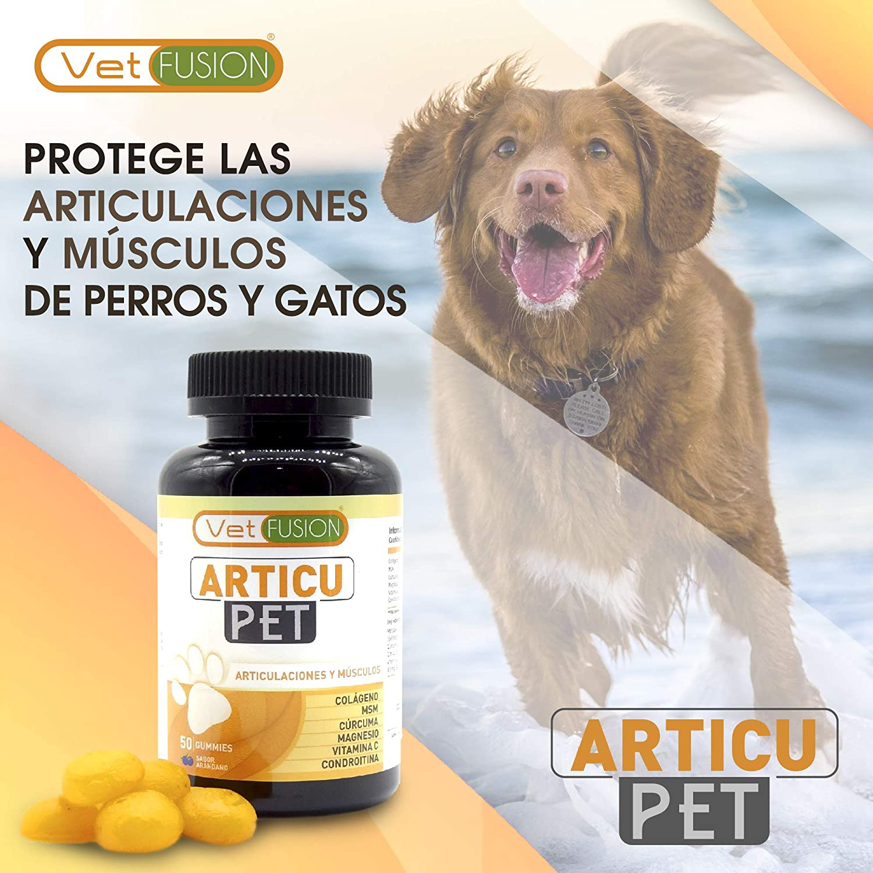 Healthy Fusion Potente Antiinflamatorio + Protector y Regenerador Articular para Perros y Gatos - Colágeno + Cúrcuma + Magnesio - Elimina Dolores ...