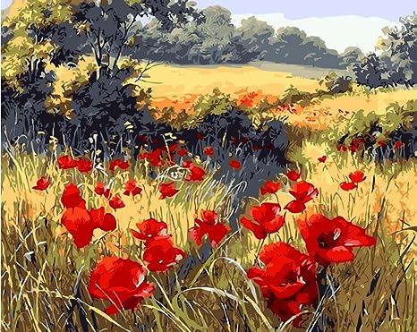 YEESAM Art pintura por número kits para adultos y niños – rojo amapola flores jardín 16 x 20 inch lino lienzo: Amazon.es: Juguetes y juegos