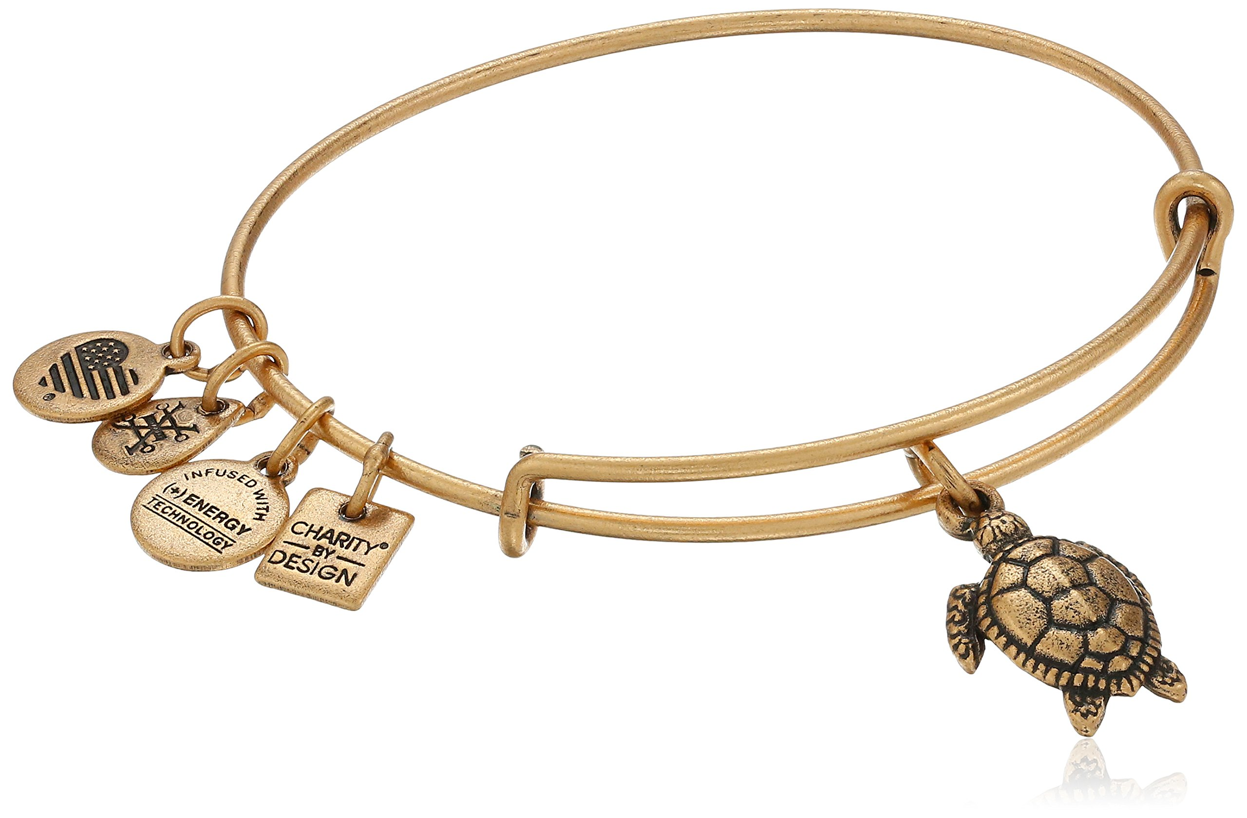 Alex and Ani Charity By Design Turtle Rafaelian Gold Bangle Bracelet