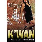Section 8: A Hood Rat Novel (Hood Rat, 3)