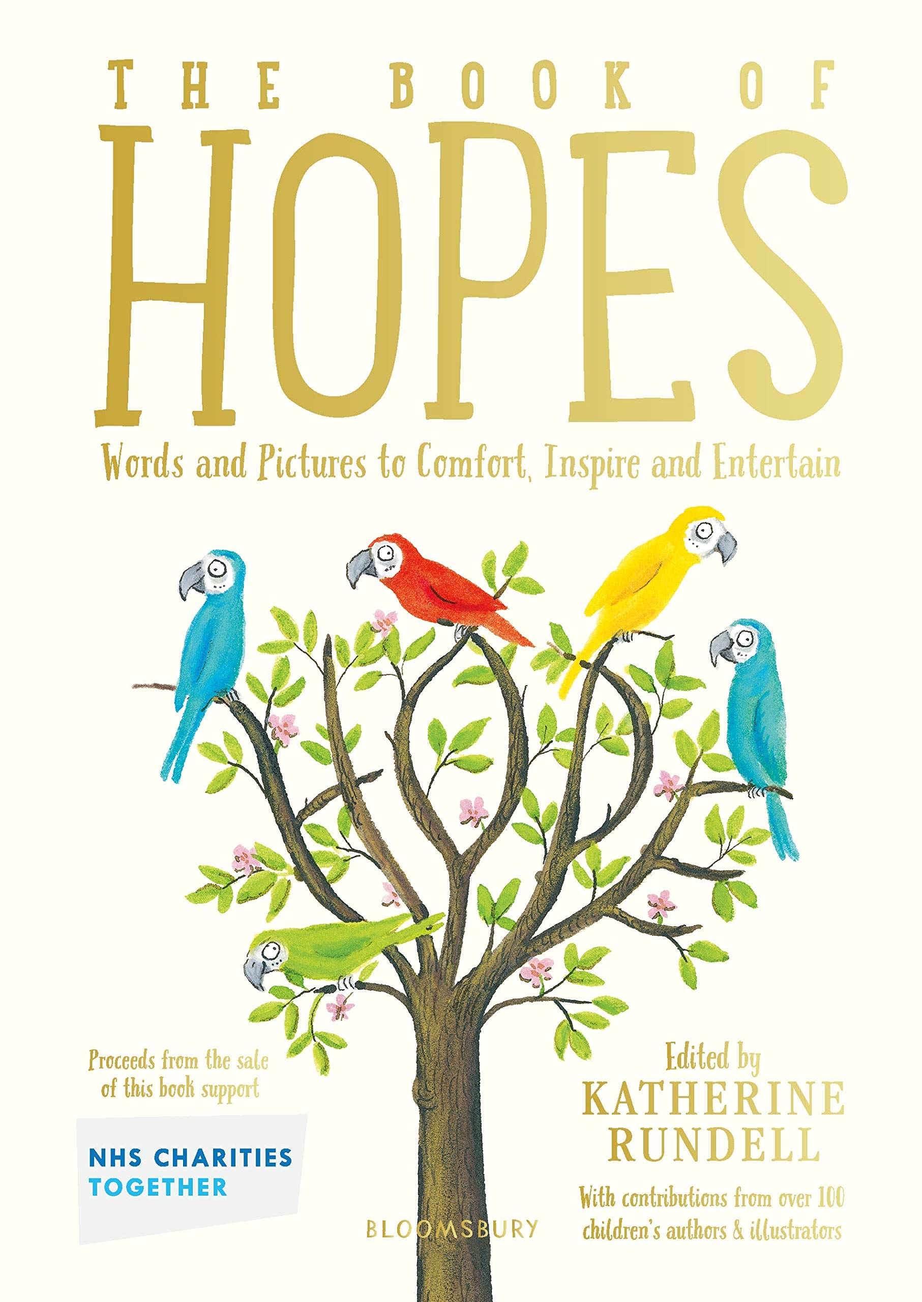 The Book of Hopes: Words and Pictures to Comfort, Inspire and Entertain:  Amazon.co.uk: Rundell, Katherine: Books
