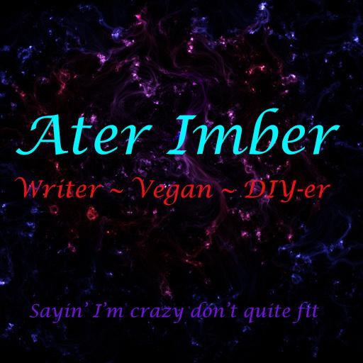 Don't Get Caught: Ater Imber: 9781520320540: Amazon com: Books