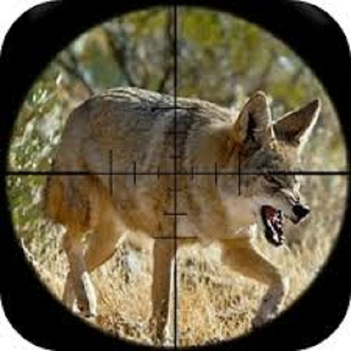 Coyote Calls (Best Rifle For Coyote Hunting)