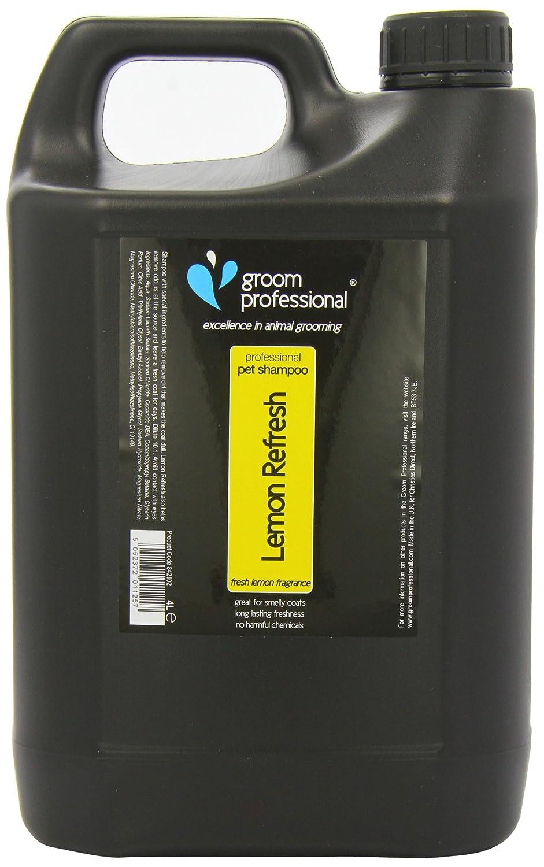 cocamide dea in shampoo list