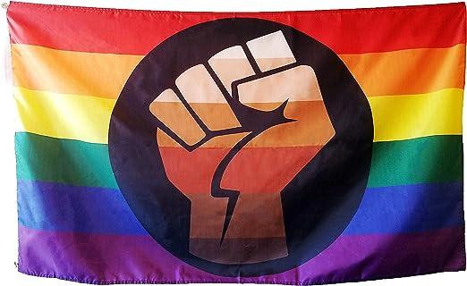 SapphireProducts Bandera del Orgullo QPOC de 3 x 5 pies – LGBT + Bandera del Orgullo con Puño de Potencia, Colores Vivos, Funda y Ojal de Metal: Amazon.es: Jardín