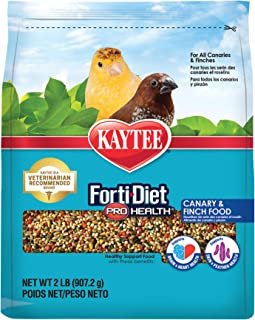 product image for Kaytee Forti-Diet Pro Health Canary & Finch Food, 2 Lb