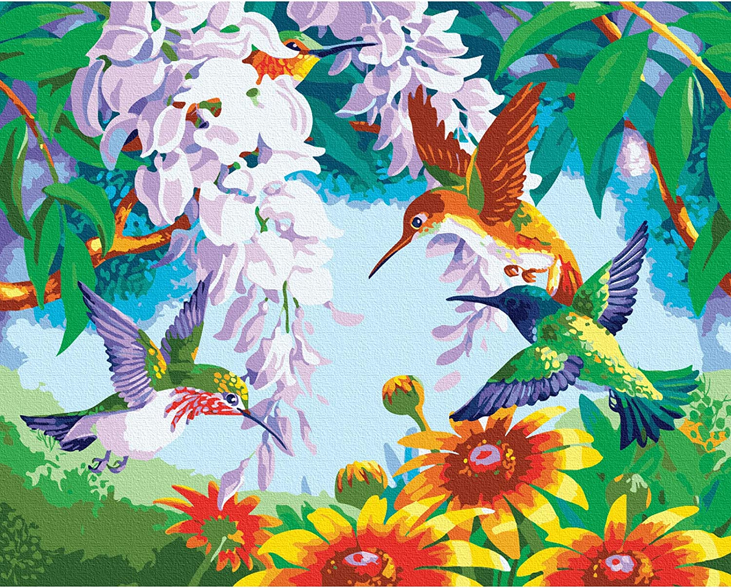 TOCARE DIY Adult Paint by Numbers Kits for Adults Kids Beginners Canvas Painting Kit Home Wall Art Decor 20x16Inch Hummingbird in Blossoms