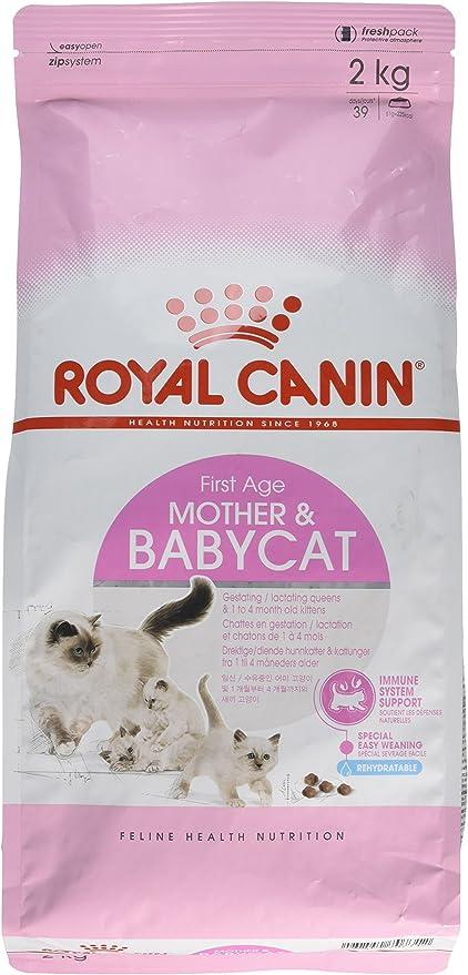 Royal Canin Comida para gatos Babycat 2 Kg: Amazon.es: Productos ...