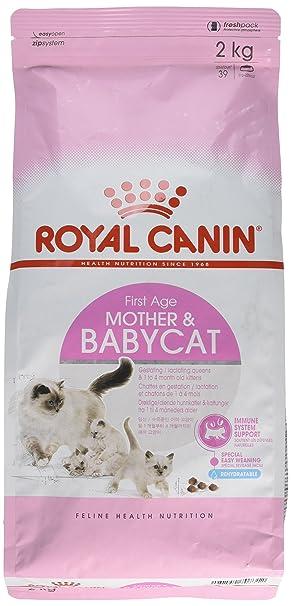 Royal Canin Comida para gatos Babycat 2 Kg: Amazon.es: Productos para mascotas