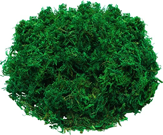 6 Pieces Green Dried Moss Decorative Green Moss Preserved Floral Moss for Plant Garden Lawn Flower Crafts Wedding Party Decoration 3 Colors