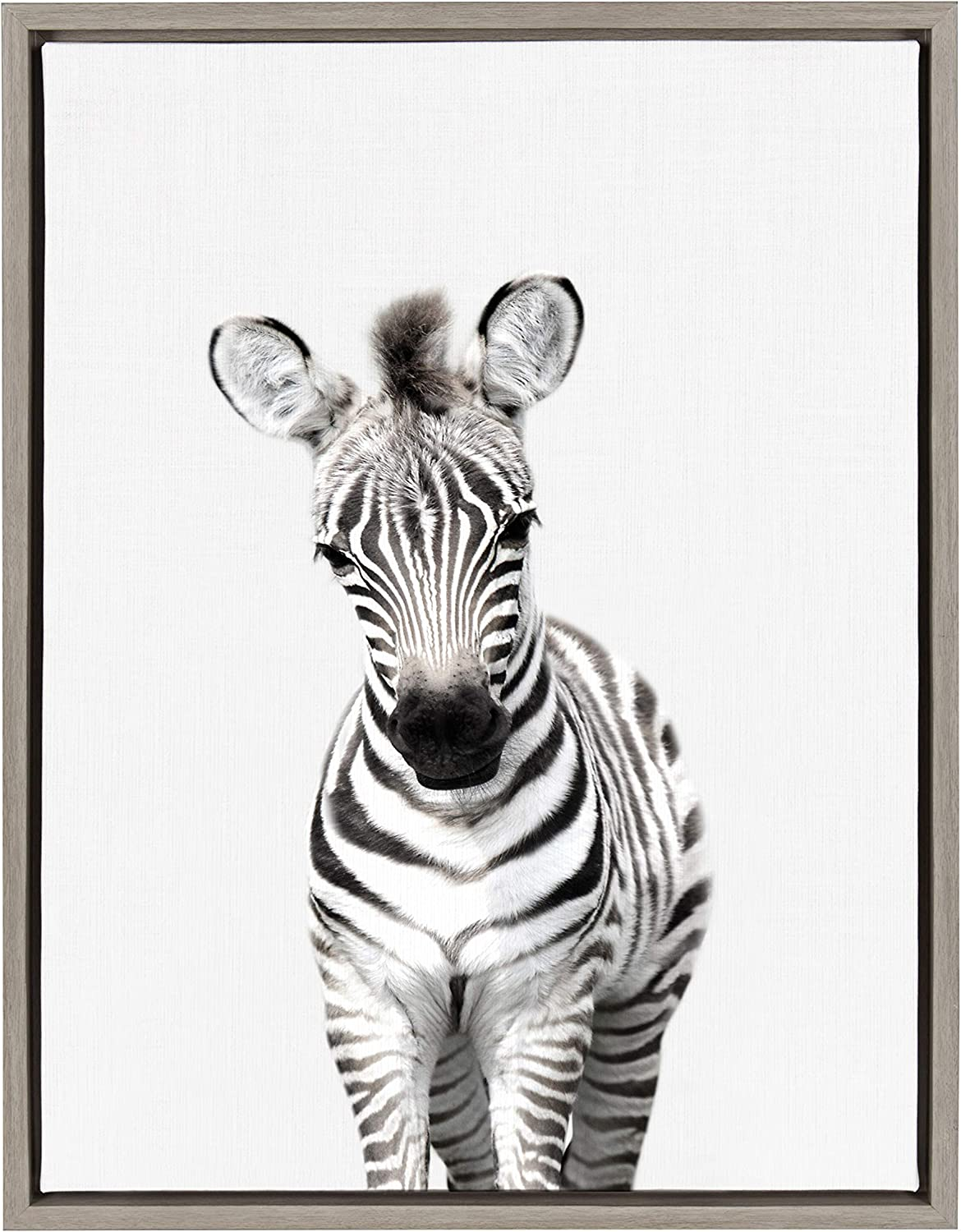 Amazon Com Kate And Laurel Sylvie Baby Zebra Animal Print Portrait Framed Canvas Wall Art By Amy Peterson 18x24 Gray Posters Prints