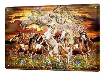 53a6db75b5a9 Cartel Letrero de Chapa XXL Caballo caballos salvajes: Amazon.es ...