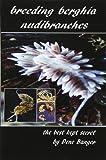 Breeding Berghia Nudibranches the best kept secret