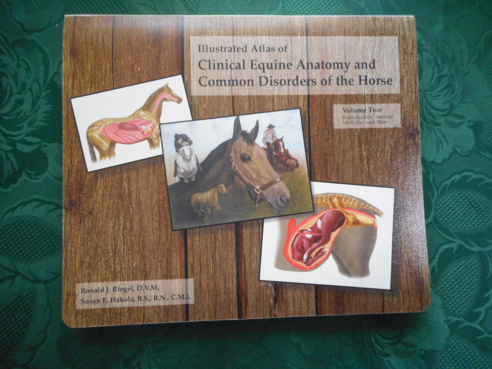 Illustrated Atlas of Clinical Equine Anatomy & Common Disorders of ...