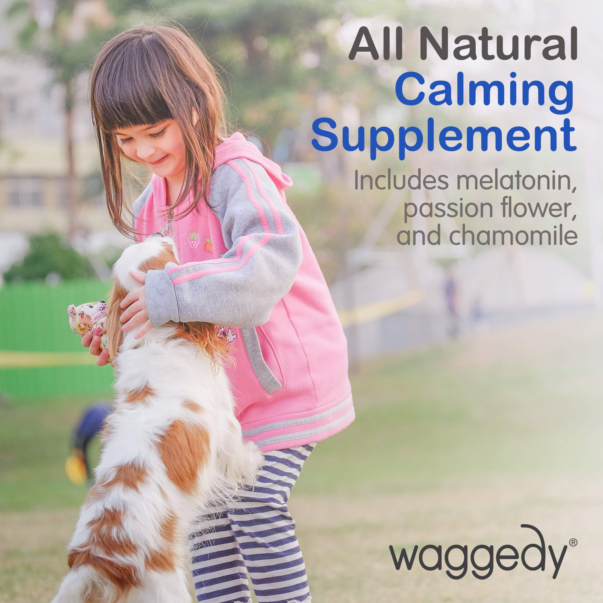 Calming Chews for Dogs, Tasty Treats Provide Stress & Anxiety Relief for Dogs During Separation, and Times of Fear - 60 Canine Melatonin Calm Aid Supplements w/ Passionflower & Chamomile (4.06 oz.) by Waggedy