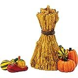 Department 56 Accessories for Villages Harvest Fields Gourds Figurine