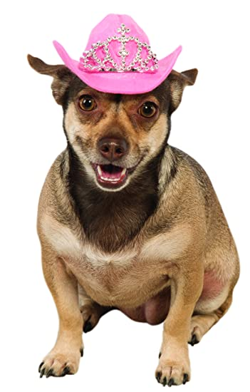 Amazon.com  Pet Dog Pink Cowboy Hat With Tiara Costume Accessory  Pet  Supplies f0e6b2b6abaf