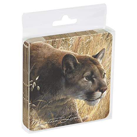 4 lion themed coasters
