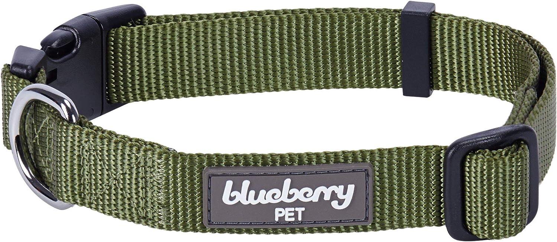 Blueberry Pet Essentials 22 Classic Dog Collar Review