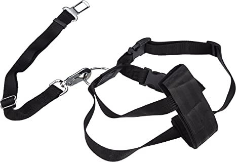 Trixie Arnés con cinturón de Seguridad, XL, 80-110 cm: Amazon.es ...