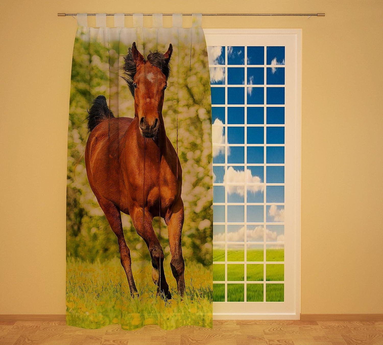 Clever-Kauf-24 Schlaufenschal Vorhang Gardine Pferd auf der Wiese BxH 145 x 245 cm   Sichtschutz   Lichtdurchlässiger Schlaufenvorhang mit Druckmotiv