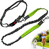 Zenify Hands Free Dog Lead for Running, Walking, Hiking Dual Handle Comfortable Waist Belt Band Reflective Stitching Adjustable Bungee Length Extendable Leash (Grey/Green)