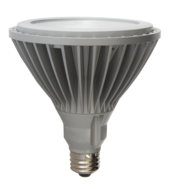 40-watt replacement GE Lighting 63104 Energy Smart LED 17-Watt 710-Lumen PAR38 Floodlight Bulb with Medium Base 1-Pack