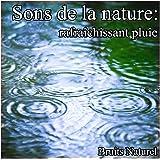 Sons de la nature: pluie rafraîchissant