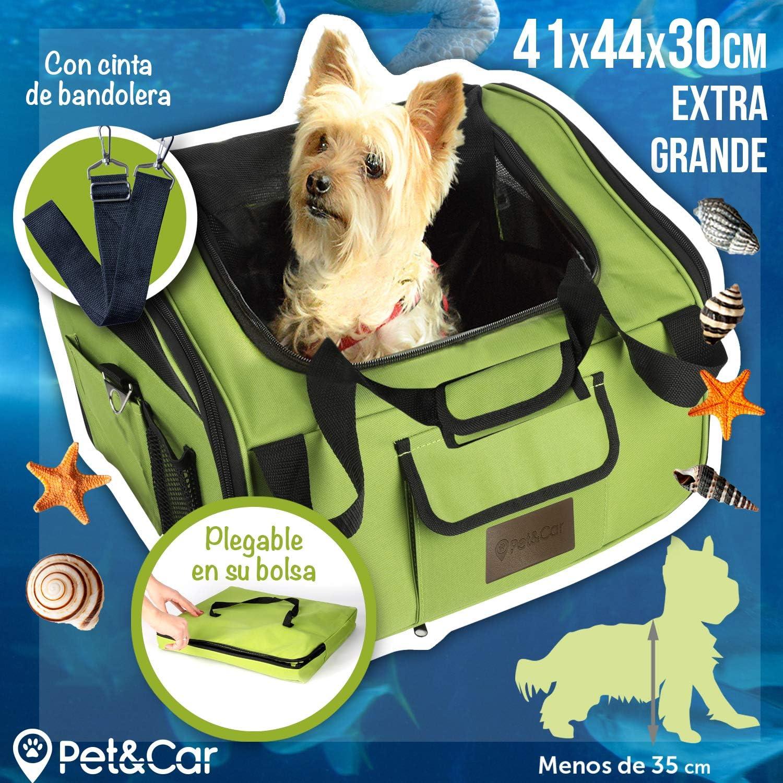 Transportín plegable de tela para gatos y perros pequeños, ideal para coche. Bolsa de viaje semirrígida para mascotas. Bolso de transporte impermeable con rejilla. Funda de almacenaje incluida: Amazon.es: Productos para mascotas